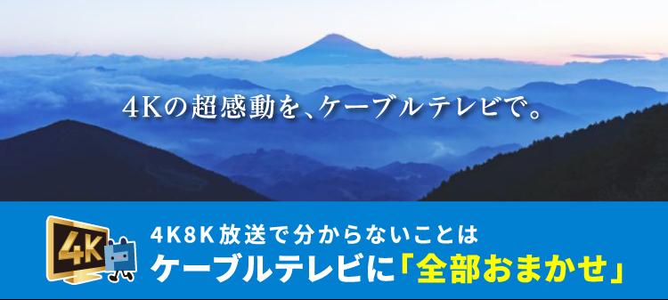 テレビ 東海 ケーブル