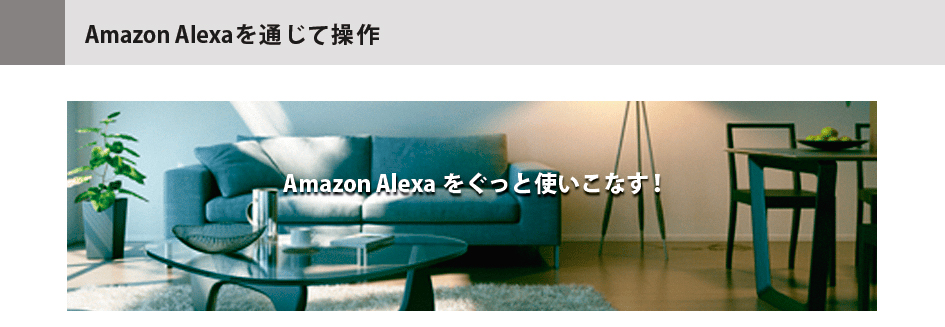 テレビ て アレクサ つけ