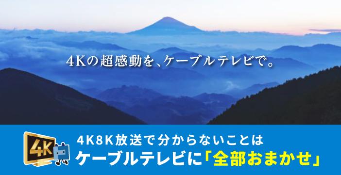 新4K8K衛星放送スタート | ひかりで繋がるテレビ・ネット・電話!4K ...
